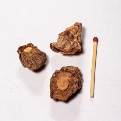 Sarsaparilla-Wurzel - Anziehung & Erotik